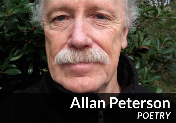 Allan Peterson