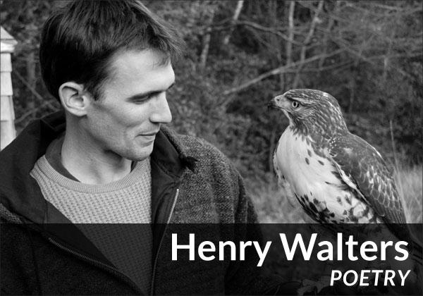 Henry Walters (Poetry)
